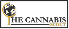 The Cannabis Scout